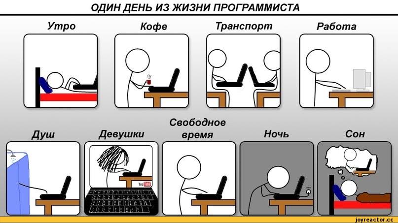 как проводит время программист